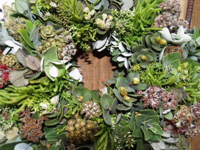 Hawaiian_christmas_wreath_5_sm