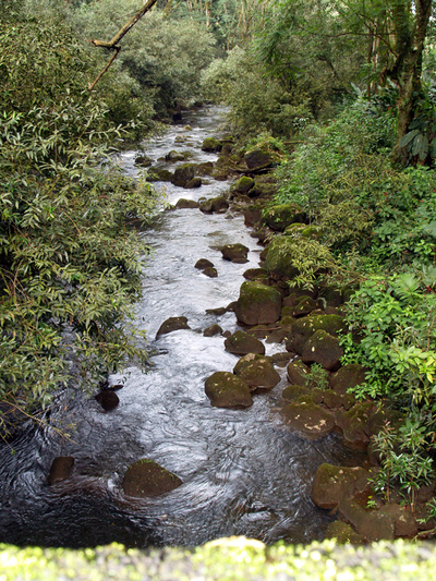 Kolekole_stream_north_view